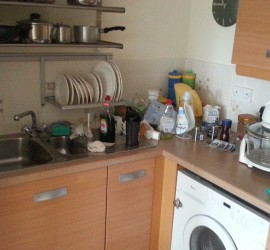 Property Clearances